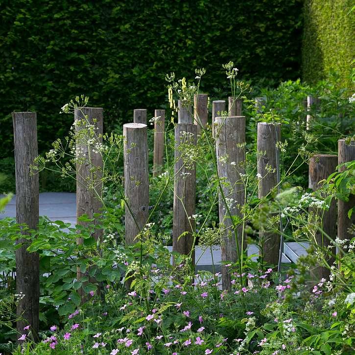 Zapuštěné dřevěné kůly