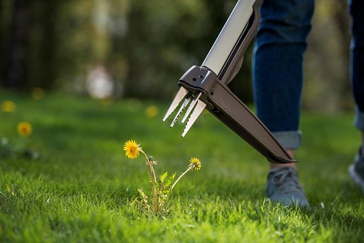 Péče o zahradu bez chemických prostředků