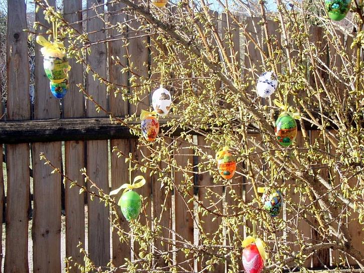 Velikonoce na zahradě