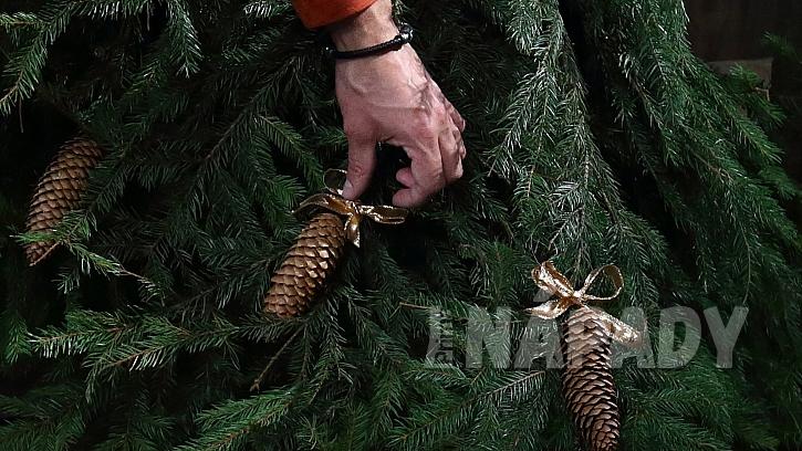 Vánoční panna: ozdobíme větve