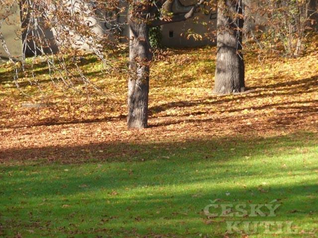 Vysavače a foukače listí
