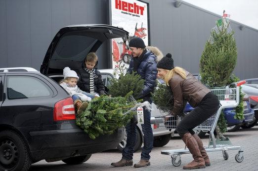 Prodej vánočních stromků od Hechtu