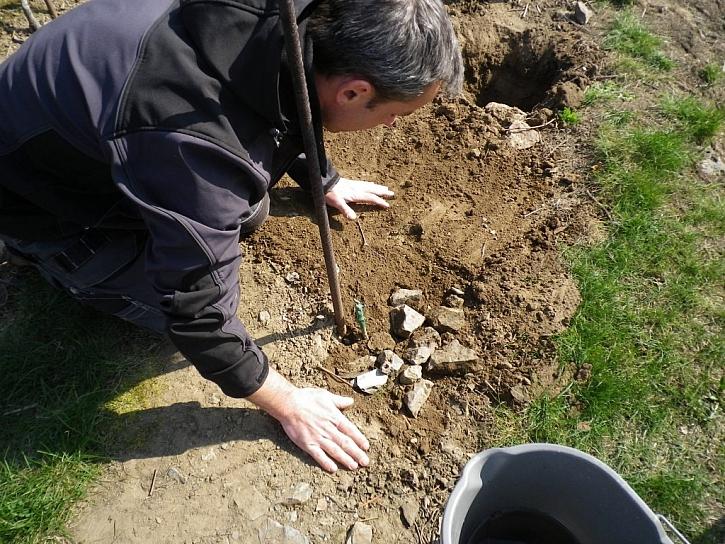 9. Urovnáme povrch. Kameny, které jsme vykopali, je dobré umístit k rostlinám, stimuluji sluneční záření