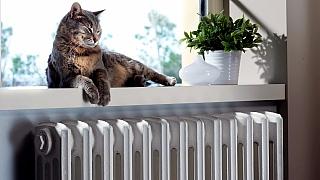 Renovace topení ve třech krocích aneb Jak připravit radiátory na sezonu včas