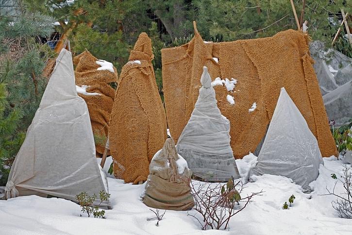 Jutové pytle mají taktéž dobrou funkci ochrany před zimou