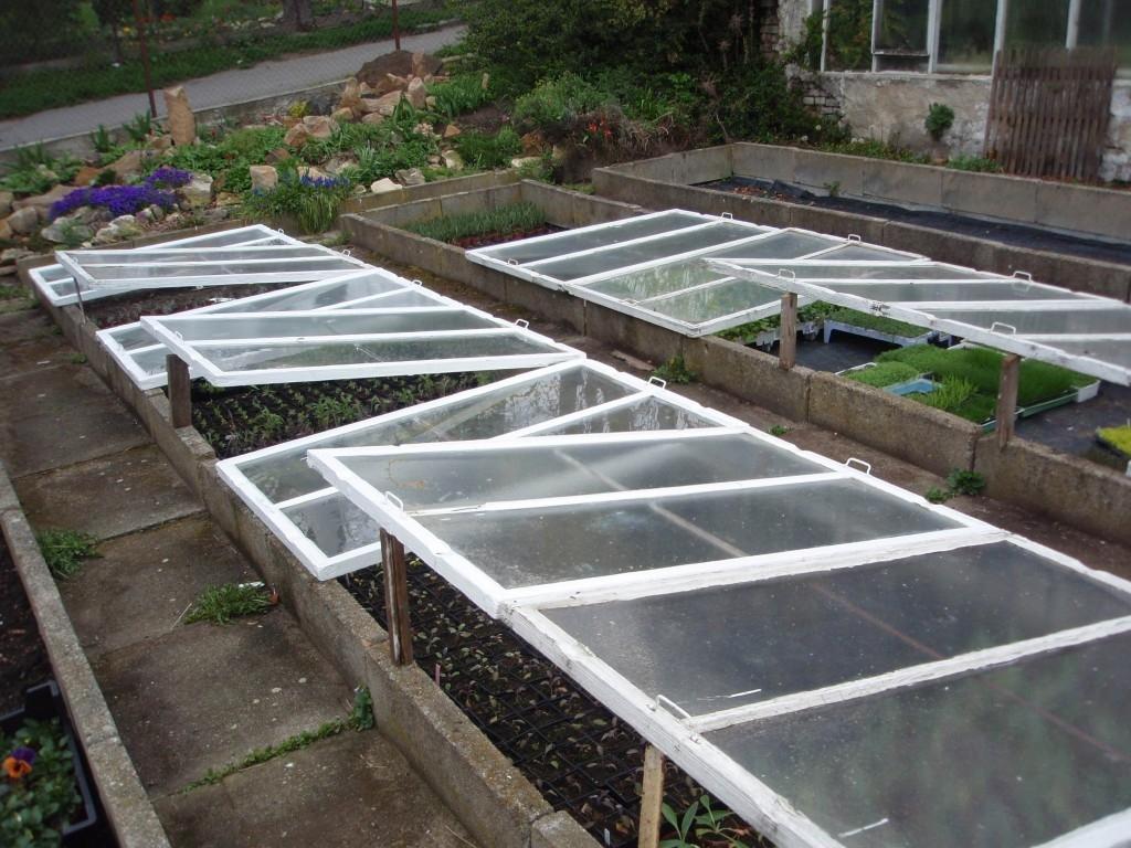 Je výhodné pořídit si skleník, fóliovník nebo pařeniště?