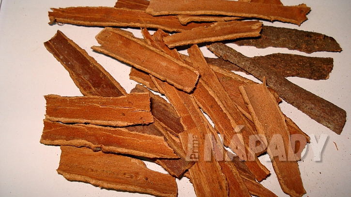 Skořice - kůra skořicovníku