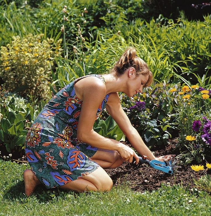 Boj s plevelem aneb Vyžeňte plevel ze zahrady