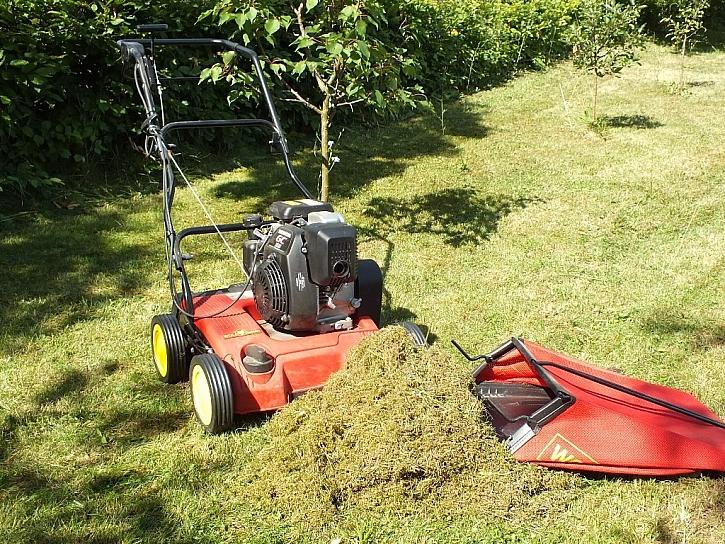 Kolik košů mechu a suché trávy vyčešeme?