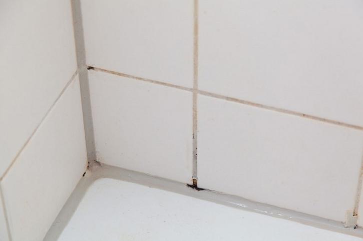 V rozích koupelny se shromažďuje vlhkost a plíseň se tedy objeví nejprve zde