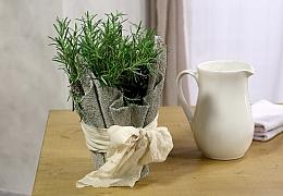 Jak se dá využít beton při výrobě dekorací: Květináč z ručníku