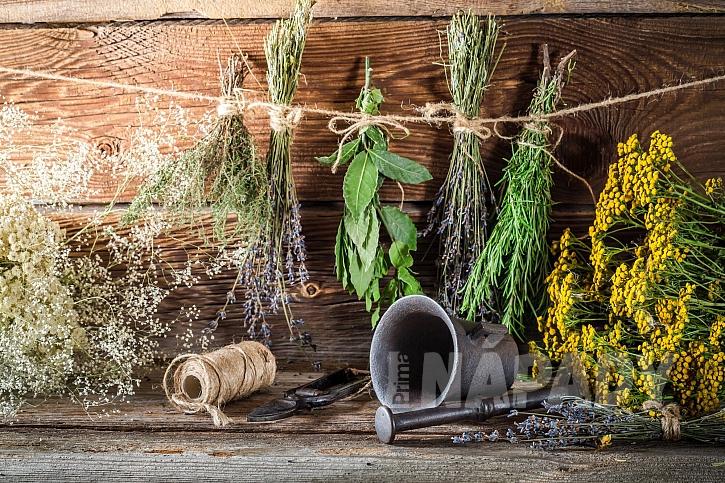 Staří horalé využívali sušené bylinky proti škůdcům i chorobám (Zdroj: Depositphotos.com)
