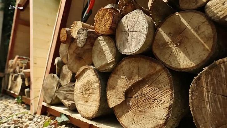 Vyskládané dřevo