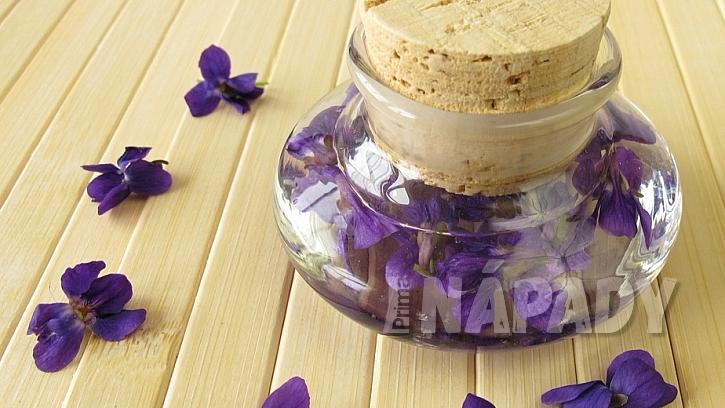 Fialka není jen voňavá, ale i léčivá bylinka k zakousnutí: fialková tinktura
