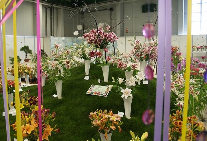 Čtyřlístek výstav vás zve do Lysé nad Labem - výstavy Elegance, Narcis a Regiony