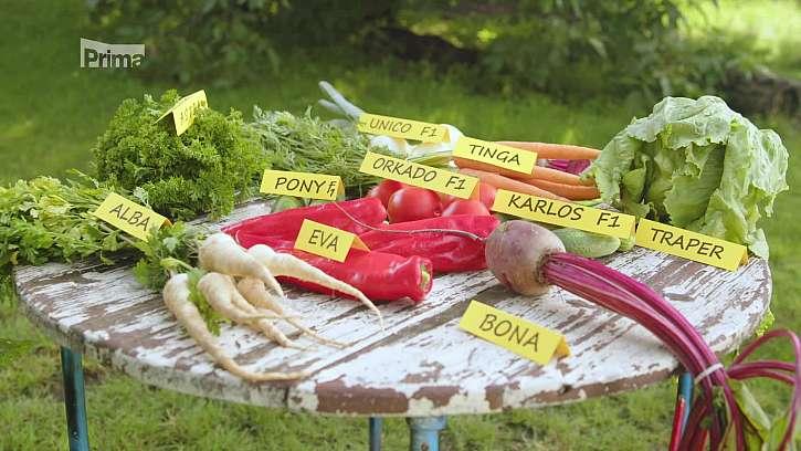Tradiční odrůdy zeleniny a jahod