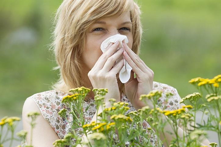 Pro alergiky začíná těžké období plné kýchání, smrkání a velké únavy (Zdroj: Depositphotos)
