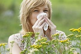 Rady pro alergiky před začátkem pylové sezóny