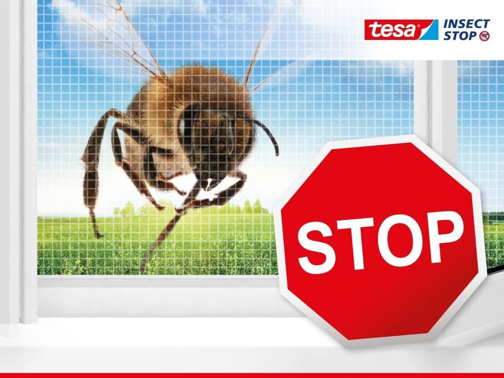 Sítě proti hmyzu, které opravdu fungují