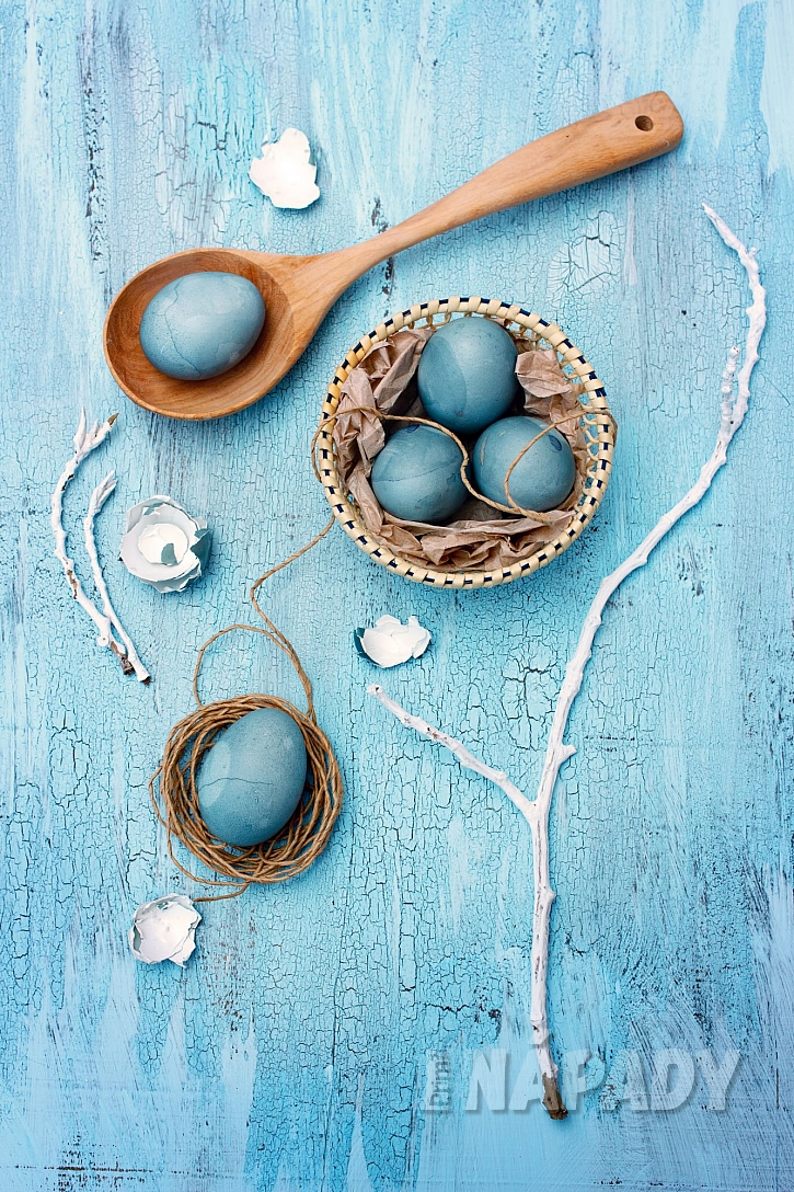 Modrá vajíčka