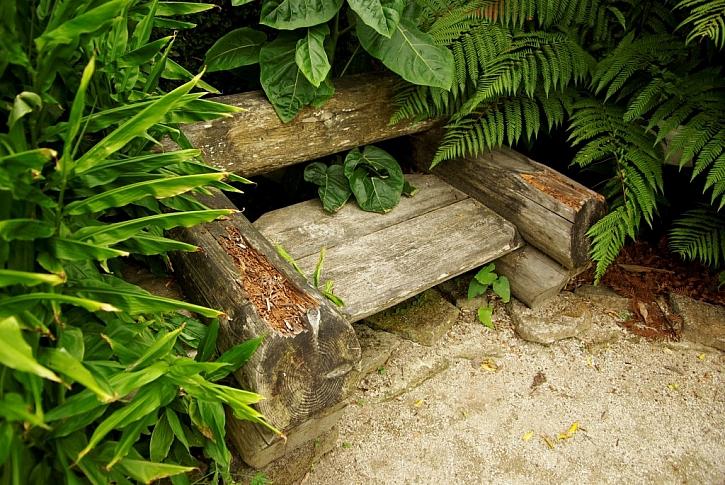 Dřevěné křeslo v zeleni funguje zároveň i jako dekorace