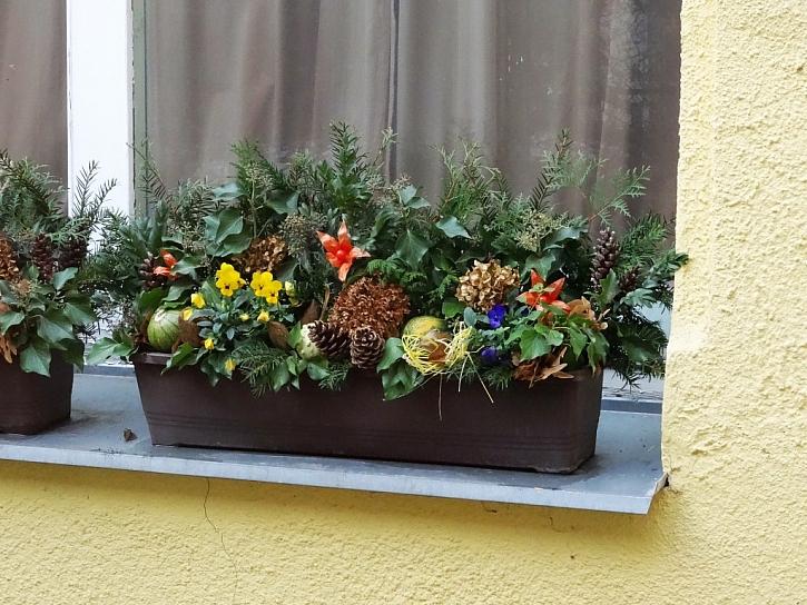 Ozdobená okna z Bohdanče