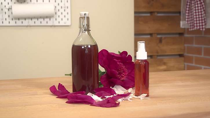 Tonikum z květů pivoňky