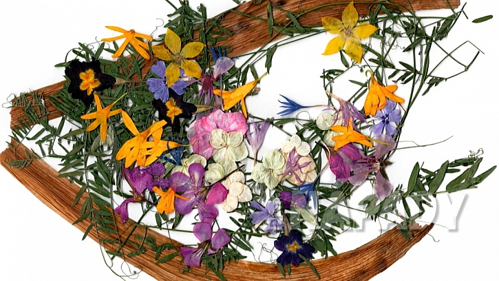 Nápady na dekorace z přírodnin: inspirace na obrázek ze sušených a vylisovaných rostlin