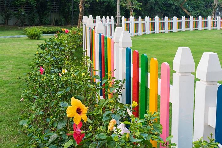 barevný dřevěný plot