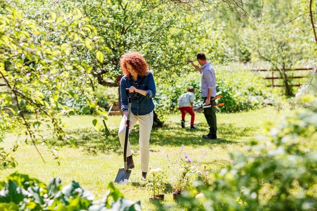 Jak pečovat o zahradu vletních měsících