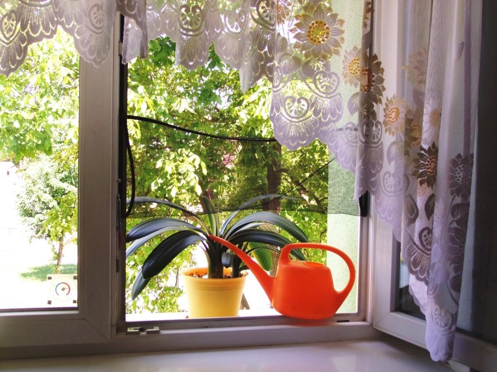 Síť do oken - velmi snadná instalace