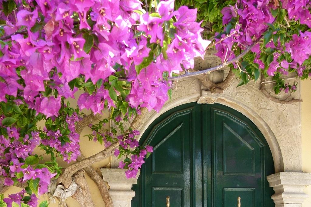 Chystáte se na dovolenou do Středomoří? Dobře se tam rozhlédněte a načerpejte zahradní inspiraci…
