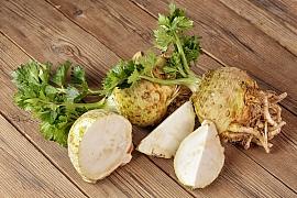 Celer je zelenina pro naše zdraví