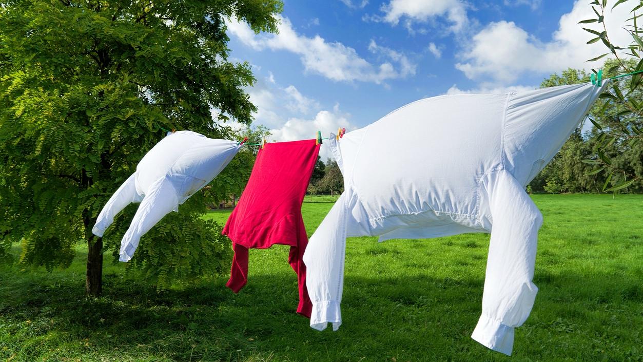 Využijte sílu slunce a větru a sušte prádlo venku aneb Jak šetřit, když je venku teplo