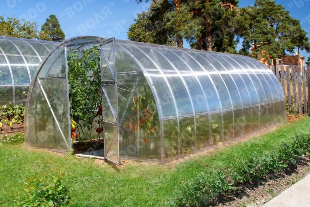 Zahradní skleníky z polykarbonátu. Jaký typ zvolit?