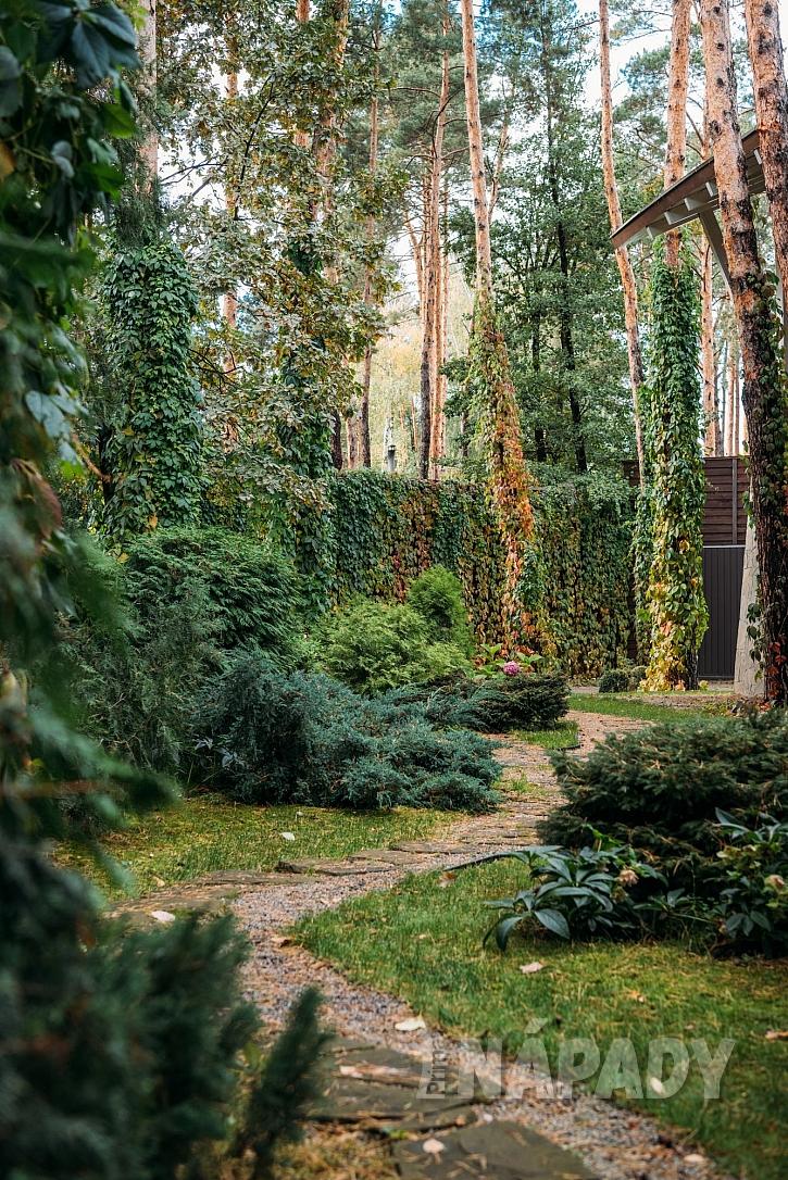 Bydlení v lese