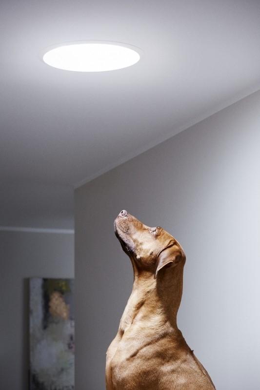 Se světlovodem můžete přivést přirozené denní světlo i do těch nejtmavších míst vašeho domu, protože je schopen přenášet sluneční i měsíční světlo dolů do místnosti na vzdálenost až 6 m