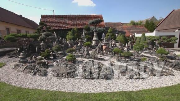 Česko - asijská zahrada