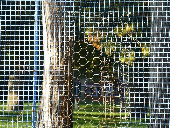 Oprava plotu jen tak na oko