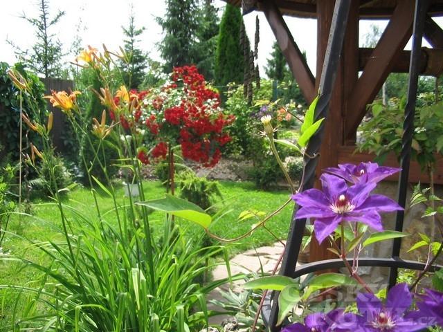 Zahrady čtenářů
