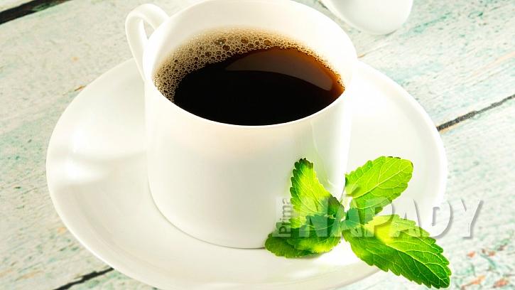Lístky stévie sladké (Stevia rebaudiana) osladí každý nápoj