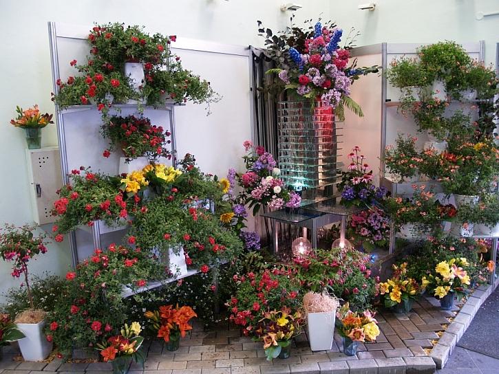 Erotika v květech - celostátní výstava Květy