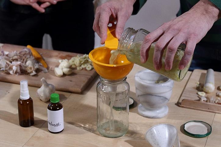 Výroba česnekové tinktury