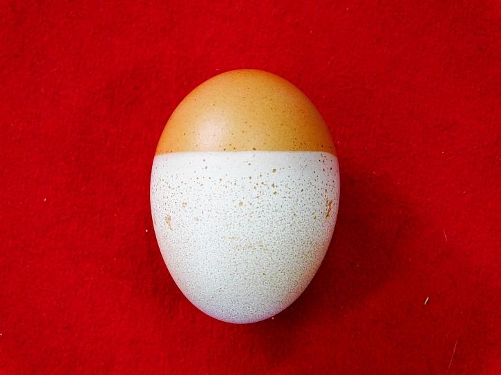Dvoubarevné vajíčko