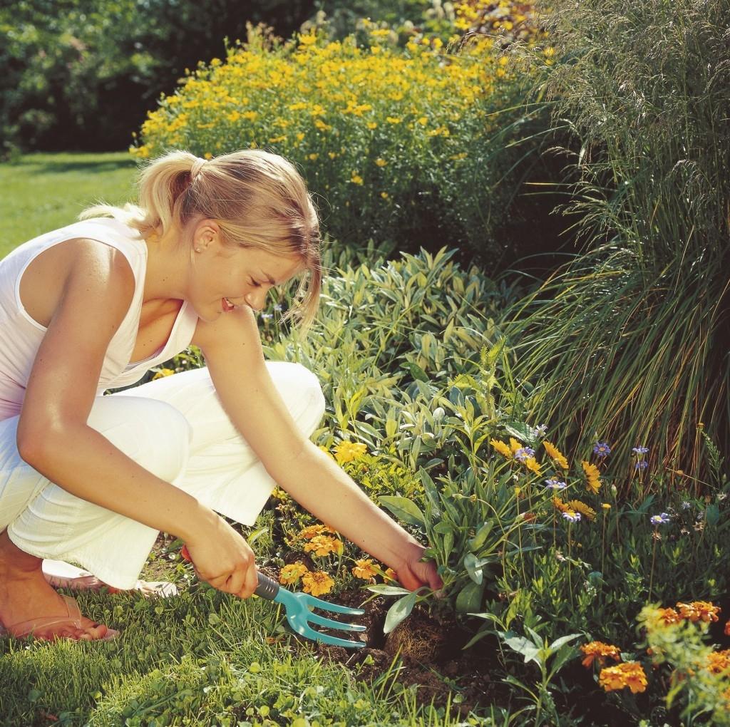 Vyžeňte plevel ze zahrady