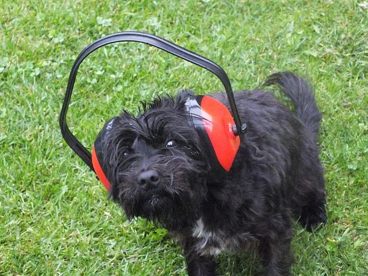 Dopřejte uchu ochranu sluchu