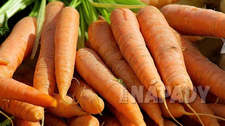 Rotujte druhy náročné na vláhu (kedlubny, celer, okurka) s druhy nenáročnými (mrkev, česnek)