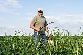 Proti plevelům bojujeme i postřikem