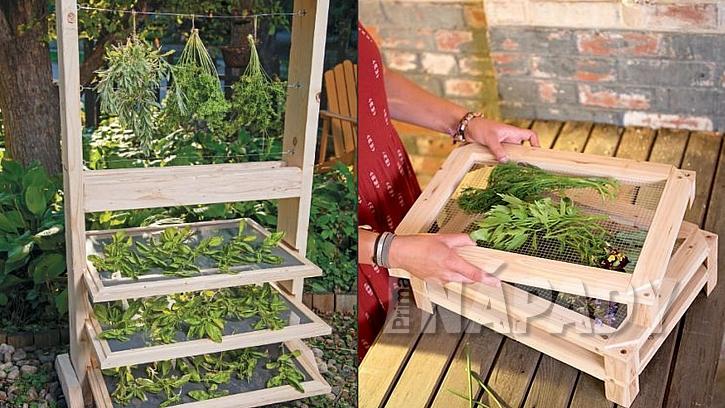 Sběr a sušení léčivých bylinek: dřevěné rámy