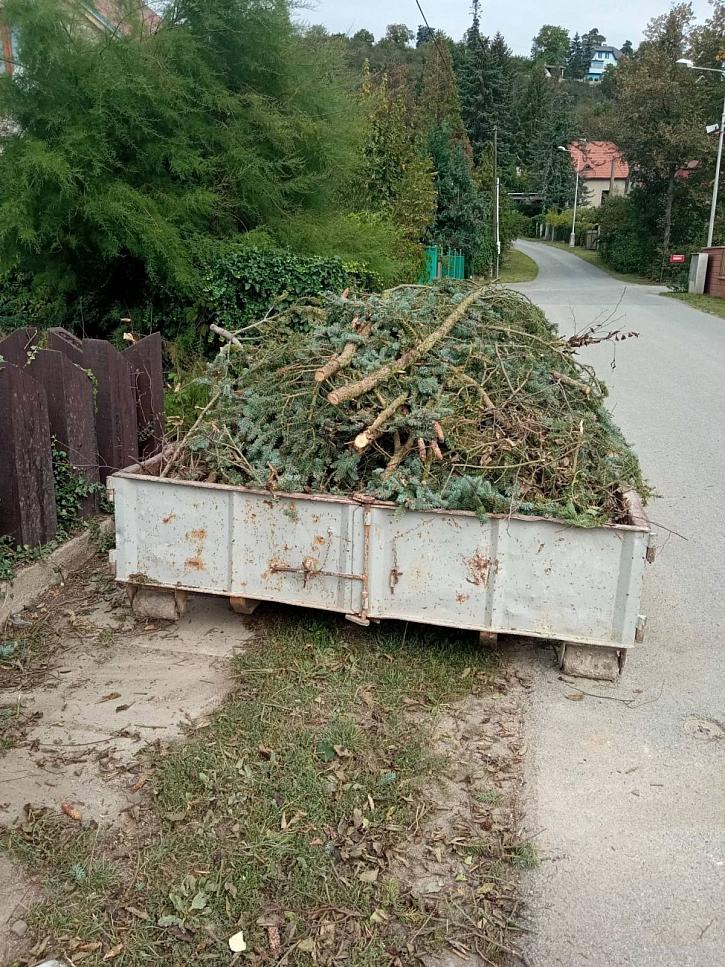 Rostlinný odpad